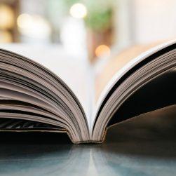 Storytelling savoir susciter de l'intérêt sur les réseaux sociaux et Internet - EDITO